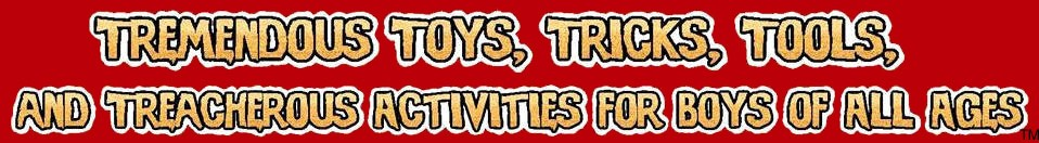 Tremendous Toys, Tricks, Tools, and Treacherous Activities for Boys of All Ages